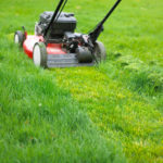 Lawn Moving And Mowing Services: How To Hire The Right Service